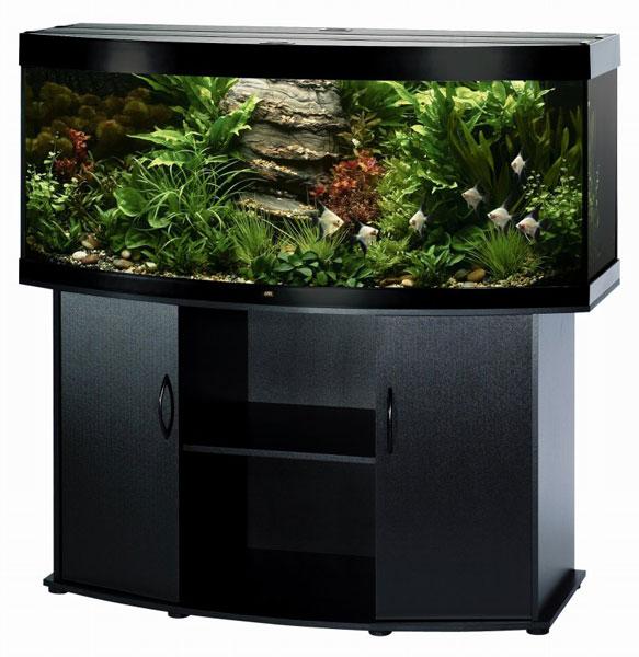 черная тумба с аквариумом